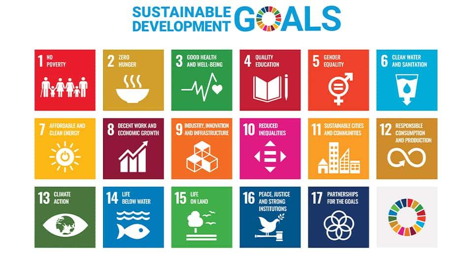 Webbseminarium om svensk forskning som relaterar till SDG